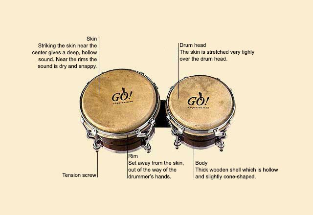 picture of Bongos