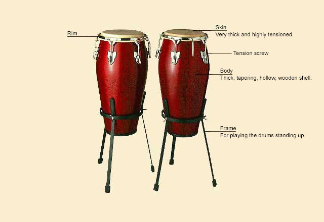 picture of Congas