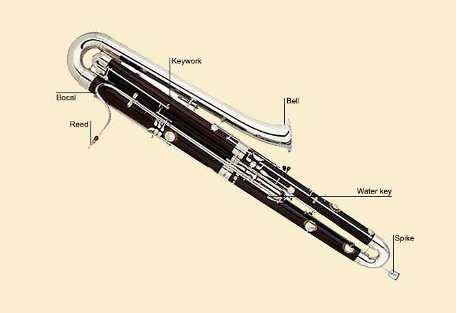 picture of Bassoon, double