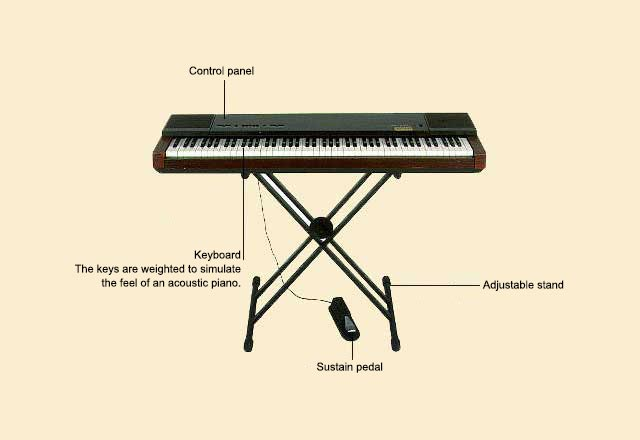 picture of Piano, Electronic