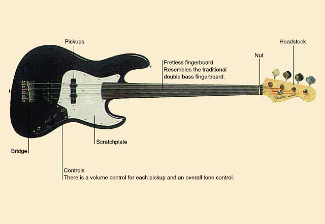picture of Guitar, Fretless Bass