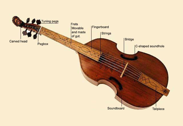 picture of Viol