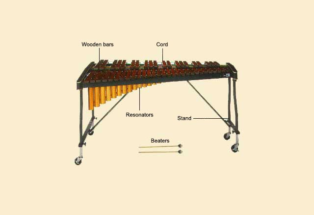 picture of Xylophone